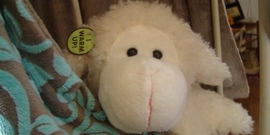 Toutou gorille blanc